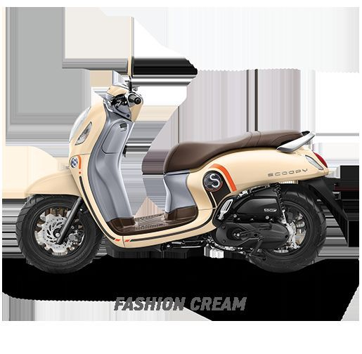 ALL New Scoopy Fashion / Sporty - fashion cream